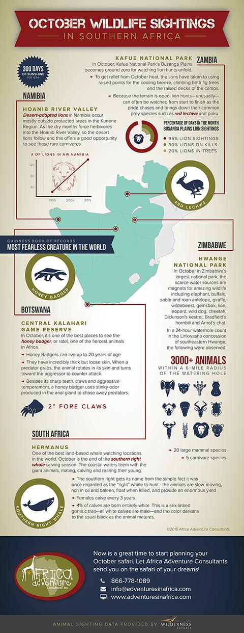 Africa Adventure Consultants • Infographic